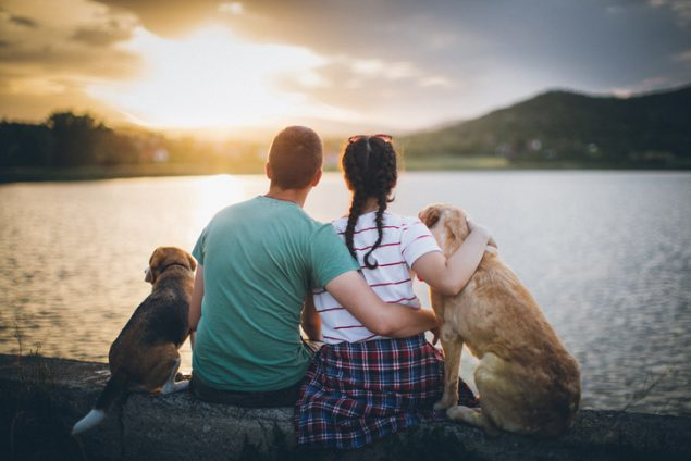 The Benefits of Having Pets